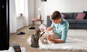 Установка и настройка домашнего wi-fi